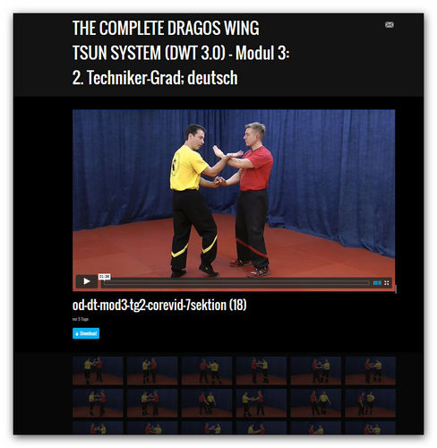 Wing Tsun Video Modul 3 - 2. Techniker-Grad, dt.