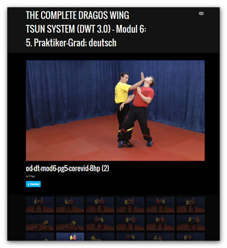 Wing Tsun Video Modul 6 - 5. Meister-Grad, dt