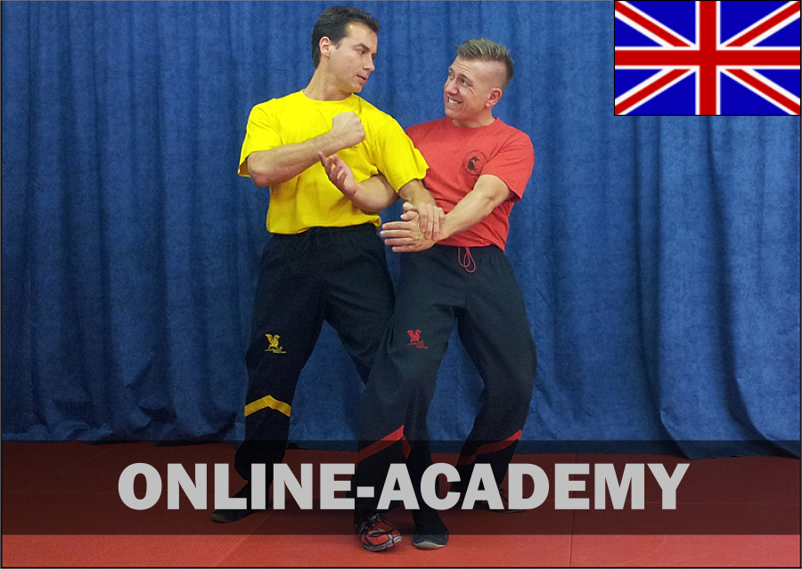 wing-tsun-online-academy-1tg-engl