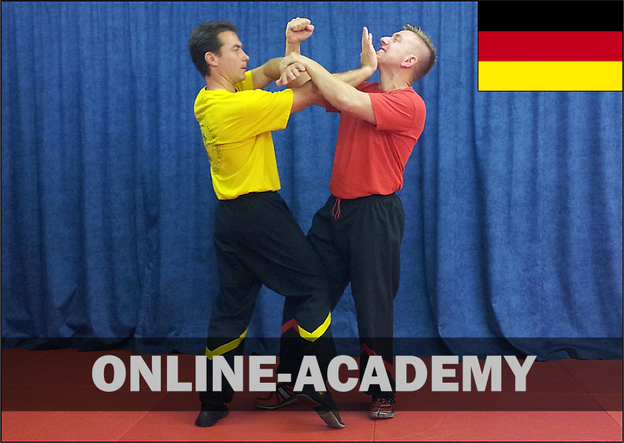 wing-tsun-online-academy-2tg-dt