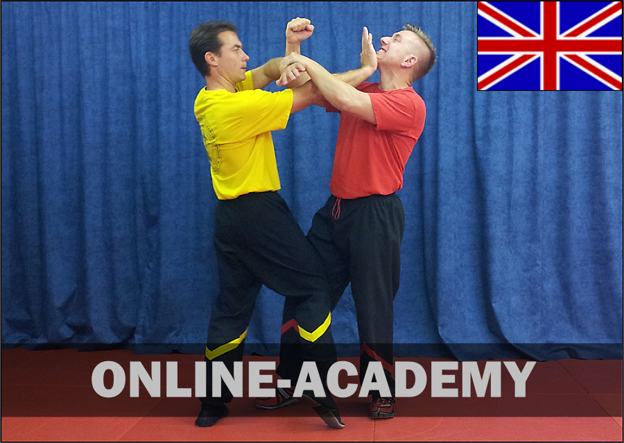 wing-tsun-online-academy-2tg-engl