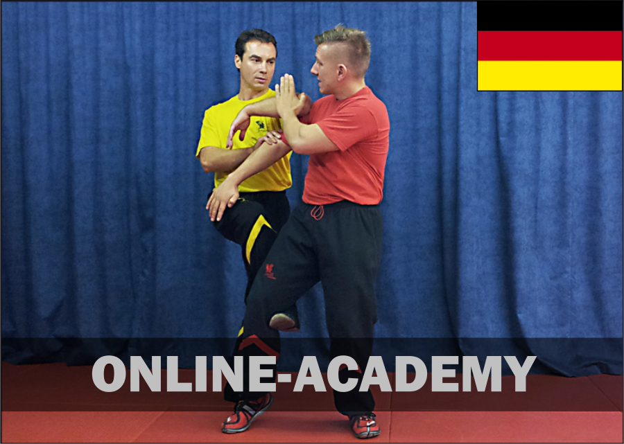 wing-tsun-online-academy-3tg-dt
