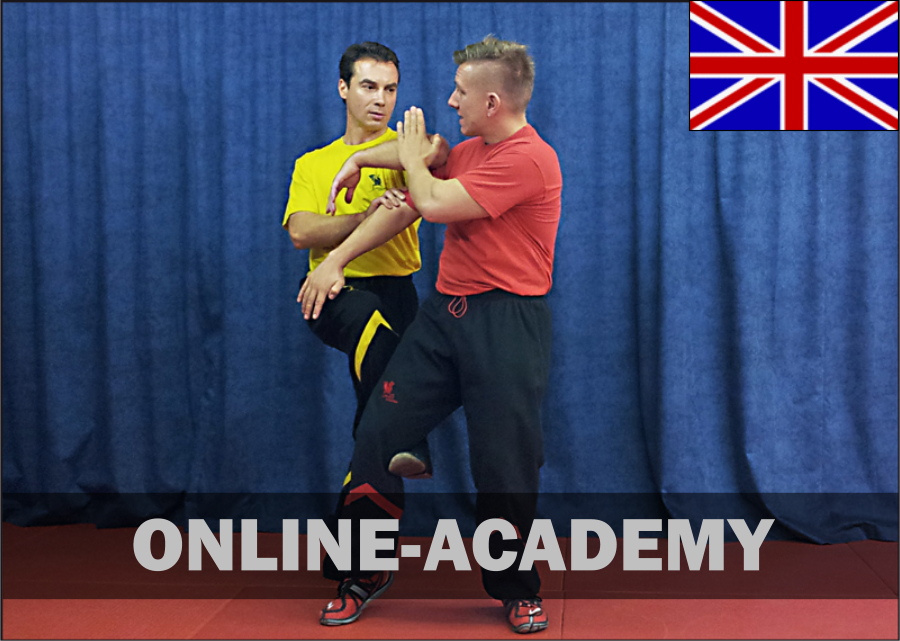 wing-tsun-online-academy-3tg-engl