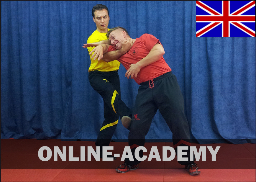 wing-tsun-online-academy-4tg-engl