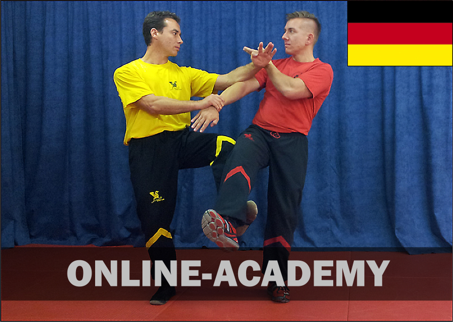 wing-tsun-online-academy-5pg-dt